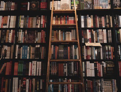 Shelves of Books - Rewriting the Script: Creating a Customized MFA Program